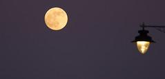 Moon Over Urban Street crop (ArtGordon1) Tags: london england uk winter 2019 january supermoon davegordon davidgordon daveartgordon davidagordon daveagordon artgordon1 moon themoon night streetlight bloodmoon