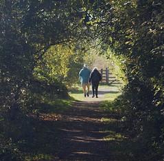 2018_10_0296 (petermit2) Tags: autumn pottericcarr potteric doncaster southyorkshire yorkshire yorkshirewildlifetrust wildlifetrust ywt