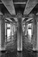 Under the Bridge (DJ Fotographic) Tags: bw blackwhite micro f28 40mm nikkor nikon britishcolumbia canada richmond