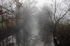 Bluegrass Foggy Morning (MarcusDC) Tags: morning fog fayettecounty ky creek reflection
