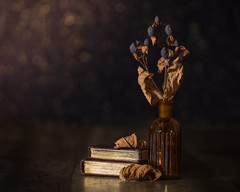 winter posy (Emma Varley) Tags: stilllife lowkey driedberries books goldleaf leaves brown bokeh light moody bottle vintage glass