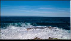 180515-0091-MAVICP-HDR.JPG (hopeless128) Tags: australia wave rocks sydney sea 2018 waves clovelly newsouthwales au