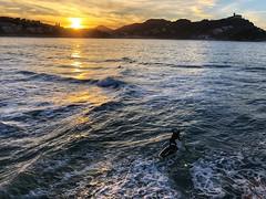 Donostia de postal (marianhergo) Tags: paisaje naturaleza atardecer olas noche piraguas mar playa laconcha paísvasco euskadi gipuzkoa sansebastián donostia