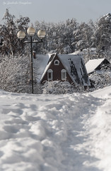 Path to the house (Lyutik966) Tags: city building roof window structure snow path lantern nature tree krasnogorsk street russia