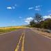 Way to Waimea Canyon State Park Hawaii