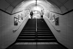 Tunnel Vision - Seven Sisters (Luke Agbaimoni (last rounds)) Tags: london londonunderground londontube transportforlondon trains