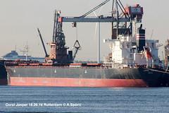 Coral Jasper (andreasspoerri) Tags: bulker coraljasper imo9591961 panama rotterdam shinkurushimatoyohashi transport alltypesoftransport