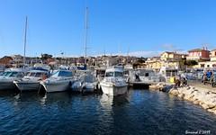 Le Port de Sausset-les-Pins pendant les Oursinades (Bernard C **) Tags: canon france provence paca provencealpescôted'azur bouchesdurhône saussetlespins oursinades seaurchinfestival