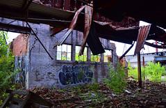 (JayRose05) Tags: urbex abandoned china factory pennsylvania western nikon photography indoor outdoor plant wall brick ceiling caving cavedin roof graffiti art tagging bricks texture textures