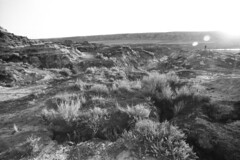 Horse Thief Canyon at Sunset - Photographer at a Distance (Pics from the Bird Cage) Tags: fomapan fomapan100classic film bw monochrome blackandwhite analog 35mm classiccamera pentax pentaxmx drumheller drumhelleralberta ishootfilm pentaxian argentique analogue horsethiefcanyon sunset canyon