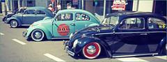 VWs Coccinelle, Rétrofolies 2018 de Spa, Belgium (claude lina) Tags: claudelina belgium belgique belgië spa rétrofolies rétrofolies2018spa auto voiture car véhicule oldcar vieillevoiture vw volkswagen coccinelle