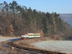 3. leden 2009: Oranžová Bára / Red Turns Orange (jetebe.cz) Tags: czechia bardotka 749 libomyšl