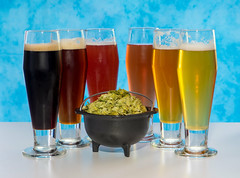Drink the Rainbow (ahockley) Tags: alcohol amberale beer drinks food hops ipa pilsner rainbow stout