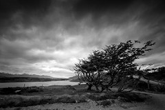 Tierra del Fuego, Argentina (pas le matin) Tags: bw nb blackandwhite noiretblanc monochrome travel voyage world canon 5d 5dmkiii eos5dmkiii canon5dmkiii canoneos5dmkiii argentina argentine terredefeu tierradelfuego patagonie patagonia sky ciel clouds nuages mood dark tree arbre sea mer beagle canalbeagle beaglechannel landscape paysage