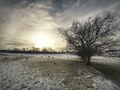 Another one from this morning (Kathryns Photography) Tags: texturedlandscape peakdistrict derbyshire view winter new outside garden photography light loversoflight