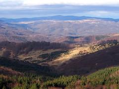 késő őszi fények / late autumn lights (debreczeniemoke) Tags: ősz autumn túra hiking hegy mountain gutin erdély transilvania transylvania táj land tájkép landscape olympusem5