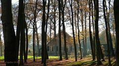 Boerderij bij kasteel Renswoude. - Farmhouse near the castle of Renswoude. (Cajaflez) Tags: bomen boerderij renswoude bauernhof farmhouse licht autumn herbst autun herfst