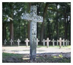 Begraafplaats Veenhuizen _ 5 (leo.roos) Tags: grave graf cross kruis veenhuizen begraafplaats kerkhof cemetery graveyard a7rii carlzeissjenabiotar5014 czj cinelens 16mm pentaflexak16 darosa leoroos