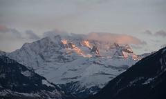 Blüemlisalp (Aeschbacher Hilde) Tags: 050319 pentaxart berneroberland schweiz blüemlisalp berge morgenstimmung winter