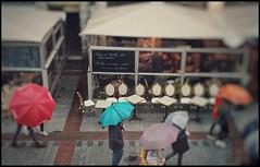 Lille sous la pluie (byNath) Tags: lille couleurs pluie urbain humain