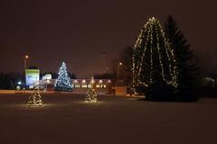 Jüri alevik (Jaan Keinaste) Tags: pentax k3 pentaxk3 eesti estonia harjumaa raevald jürialevik jõulud christmas talv winter