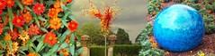 Dallas Arboretum (Tear Drop Reflections Photography) Tags: dallas arboretum texas dallasarboretum art glass dallasarboretumandbotanicalgarden botanicalgarden glasssculpture sculpture dallastexas