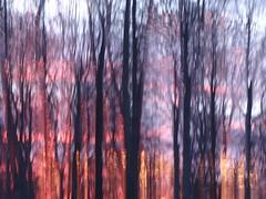 Morning Glory (evisdotter) Tags: sunrise light icm intentionalcameramovement sooc