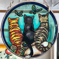 Light Catcher (Timothy Valentine) Tags: large 0119 cat 2019 glass butterfly northeaston massachusetts unitedstatesofamerica us