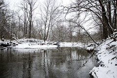 Meet Me On The Other Side (aaron_gould) Tags: creek river bed stream trees water flow snow quiet tranquility morning landscape nature january frost ohio outside nikkor winter d7000