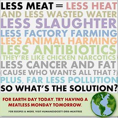 HARM Reduction vegan cancer heart attack less meat (BIRDMAN Vegan Future) Tags: vegan animals food meat recipes cooking diet low carb protein foodie bacon healthy health