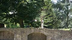 2013-08-16_16-48-44_NEX-6_DSC09767 (Miguel Discart (Photos Vrac)) Tags: 100mm 2013 belgie belgique belgium botanicalgarden brugelette e18200mmf3563 focallength100mm focallengthin35mmformat100mm iso200 jardinbontanique nex6 pairidaiza paradisio sony sonynex6 sonynex6e18200mmf3563 zoo