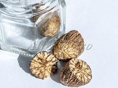 Alf Ribeiro 0269-51 (Alf Ribeiro) Tags: brazil brazilian closeup macro nutmeg aroma aromatic background brown culinary delicious dessert diet dieting dry eating flavor food fragrans fresh freshness fruit glass gourmet healthy herb ingredient isolated lifestyle natural nature nut organic path pot raw ripe scent scented season seasoning seed shiny snack spice spicy uncooked vegetarian white whole