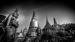 The Grand Palace Bangkok (Gerald Ow) Tags: geraldow bangkok thailand grandpalace sony a7r2 a7rmk2 a7rii fe 1635mm f4 za oss blackwhite bw monochrome พระบรมมหาราชวัง hanuman lightroom zeiss architectual wide angle temple emerald buddha wat phra kaew กรุงเทพมหานคร krung thep maha nakhon