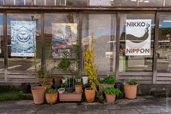 Nikko is Nippon (FlickrDelusions) Tags: nikko streetphotography signs japan towncentre