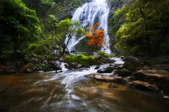 Waterfall in the autumn (Patrick Foto ;)) Tags: autumn background beautiful beauty cascade creek environment fall flow foliage forest green landscape leaf liquid moss motion mountain natural nature orange outdoor park red river rock scenery scenic season splash stone stream thai thailand tree water waterfall wood yellow khlonglan kamphaengphet th
