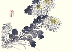 Florist's chrysanthemum (Japanese Flower and Bird Art) Tags: flower florist's chrysanthemum grandiflorum asteraceae ukiyo woodblock picture book japan japanese art readercollection