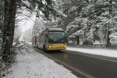 OTW 5953-48 (Public Transport) Tags: autobus bus buses bussen belgique busen bussi busz transportencommun tec trasportopubblico tecliègeverviers publictransport provincedeliège publictranport vanhool otw