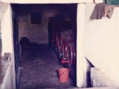 Wine barrels (sixthland) Tags: barrels cellar hungary scan vineyard wine