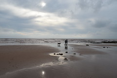 Low Tide (davidvines1) Tags: sea sky cloud beach sand people walking dog devon england silhouette reflection rockpool