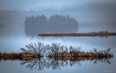 1 (kallekaisanlahti) Tags: nature luonto lake autumn serenity