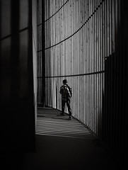 gone (Georgie Pauwels) Tags: gone light shadows structure street candid streetphotography urban ordinarylife olympus everydaylife moment walking