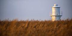 East Usk Lighthouse (Andrew Hocking Photography) Tags: eastusklighthouse lighthouse newport wetlands landscape outdoor naturereserve wales uk gb reeds gloomy morning white heavy explored inexplore explore