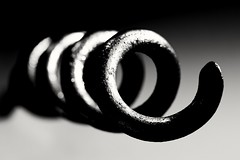 Spiral (phileveratt) Tags: smileonsaturday spirals dogtether blackwhite monochrome canon ef100mmf28usmmacro eos77d spiral