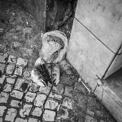 Lisboa (joram.s) Tags: lisbon lisboa canon eos 5d 5dmk2 bw blackandwhite street reportage city