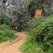 Waipoo trail Kauai, Hawaii pano
