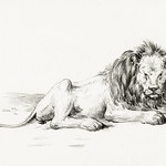 Lying lion (1822) by Jean Bernard (1775-1883). Original from The Rijksmuseum. Digitally enhanced by rawpixel. thumbnail