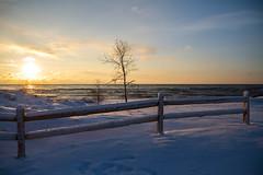 Sunrise (Lester Public Library) Tags: tworiverswisconsin tworivers wisconsin beach beaches snow winter sunrise sun water lakemichigan lake fence splitrailfence lesterpubliclibrarytworiverswisconsin readdiscoverconnectenrich neshotahbeach neshotah neshotahpark