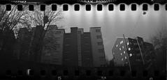 Landala (rotabaga) Tags: sverige sweden svartvitt sprocket göteborg gothenburg blackandwhite bwfp bw diy expiredfilm tmax3200 toycamera r09 lomo lomography