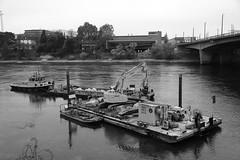 autumn Basel 16-11-2018 004 (swissnature3) Tags: basel switzerland autumn fall river rhine ship