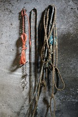 ON THE STABLE WALL (LitterART) Tags: strick stricke ketten kette chain chains stall stable rope ropes